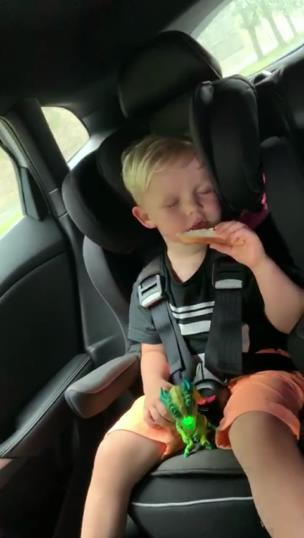 Little lad eats sandwich while he's asleep collection item
