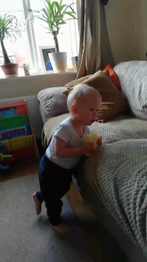 Little lad munching on a whole block of cheddar cheese collection item